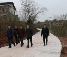 湖南衡南县: 修通连心路,返乡老乡齐点赞