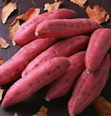 优质红薯批发